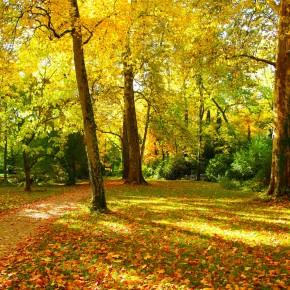 5 destinos para viajar en otoño