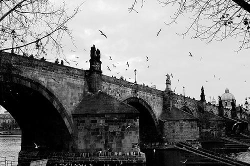 Imagen de Flickr: JorgeGT