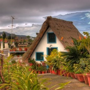 Madeira, alfombra multicolor